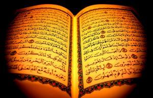 伊斯兰教世界(1555-1768年)