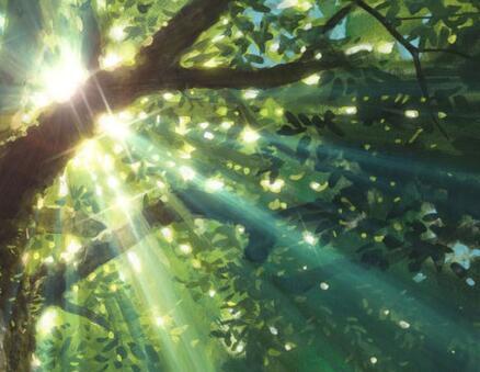 生命的缝隙 阳光充足