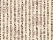 """裘锡圭:谈谈学习古文字的方法 之""""古文字学"""""""