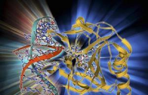 Science:重磅!揭示一种新的DNA损伤修复机制
