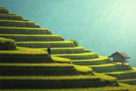 乡间诗意:竹篱茅舍,淡烟衰草孤村。